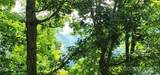 Lot 101 Tuxedo Ridge - Photo 6