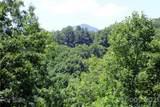142 Pleasant Ridge Drive - Photo 13