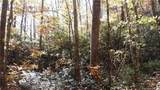 3.98 Acres+- Log Gap Road - Photo 11