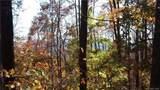 3.98 Acres+- Log Gap Road - Photo 19