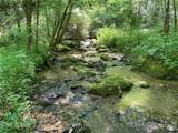 3619 Lonesome Mountain Road - Photo 5