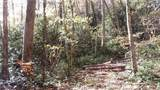3.98 Acres+- Log Gap Road - Photo 22