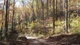 3.98 Acres+- Log Gap Road - Photo 4