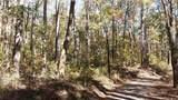 3.98 Acres+- Log Gap Road - Photo 5