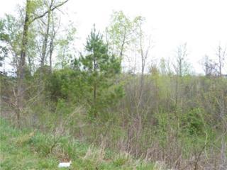 4080 French Fields Lane #67, Harrisburg, NC 28075 (#3160344) :: Team Honeycutt