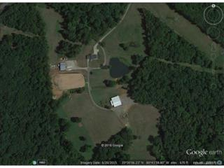 9151 Archer Road, Davidson, NC 28036 (#3175630) :: Carlyle Properties