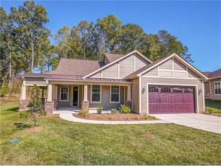 5590 Elk Knob Court, Denver, NC 28037 (#3224604) :: Miller Realty Group