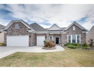 4062 Ambleside Drive, Indian Land, SC 29707 (#3229764) :: Miller Realty Group
