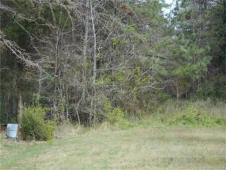 6633 Edna Street, Huntersville, NC 28078 (#3253737) :: Cloninger Properties