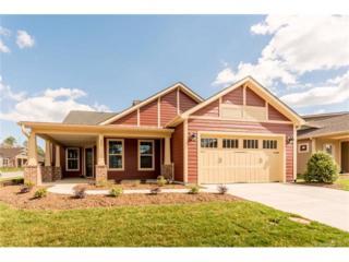 389 Flat Rock Drive #236, Denver, NC 28037 (#3254533) :: Miller Realty Group