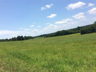 2700 Long Run Farm Hollow #3, Mount Pleasant, NC 28124 (#3260857) :: Team Honeycutt