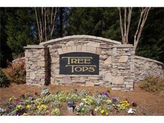 102 Burning Ridge Drive #102, Stanley, NC 28164 (#3260897) :: Cloninger Properties