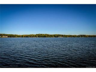 1358 Astoria Parkway, Catawba, NC 28609 (#3261187) :: Cloninger Properties