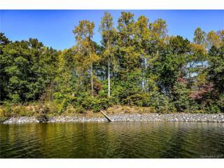 966 Astoria Parkway, Catawba, NC 28609 (#3261277) :: Cloninger Properties