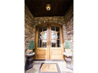 261 Bent Tree Drive, Stanley, NC 28164 (#3262849) :: Cloninger Properties