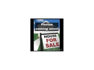 202 Palmetto Street, Clover, SC 29710 (#3264202) :: Rinehart Realty