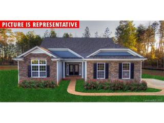 193 Blueview Road #53, Mooresville, NC 28117 (#3264489) :: Team Honeycutt