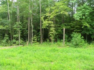 109 Brief Road W, Indian Trail, NC 28079 (#3264558) :: Rinehart Realty