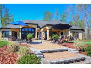 721 Anchors Bend Cove, Lake Wylie, SC 29710 (#3264896) :: Miller Realty Group