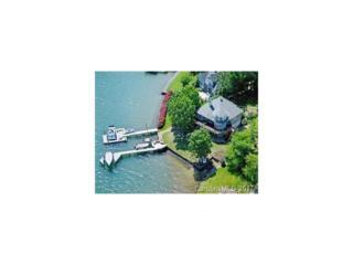 19124 N Lakehouse Pointe Drive N, Cornelius, NC 28031 (#3269616) :: Cloninger Properties