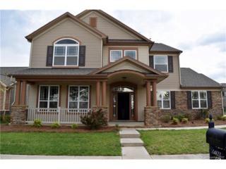 14821 Skyscape Drive, Huntersville, NC 28078 (#3272895) :: Cloninger Properties