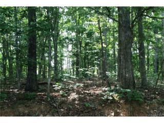 116 Poinsettia Lane, Mooresville, NC 28117 (#3274062) :: Cloninger Properties