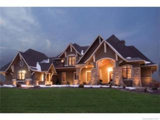 7245 Henry Harris Road, Indian Land, SC 29715 (#3274417) :: Lodestone Real Estate