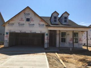 2225 Prairie Road #299, Concord, NC 28027 (#3281275) :: Rinehart Realty