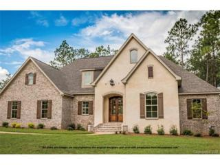 9122 Truelight Church Road #2, Mint Hill, NC 28227 (#3283749) :: Lodestone Real Estate