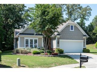 48560 Snapdragon Lane, Indian Land, SC 29707 (#3284093) :: Lodestone Real Estate