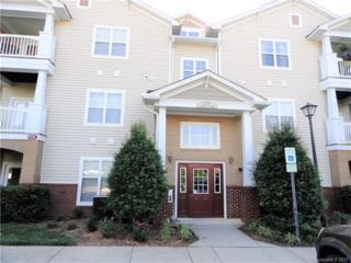 17118 Red Feather Drive #17118, Charlotte, NC 28277 (#3284156) :: Lodestone Real Estate