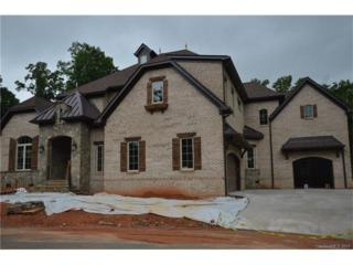 3810 Stoney Ridge Trail, Charlotte, NC 28210 (#3284805) :: Lodestone Real Estate