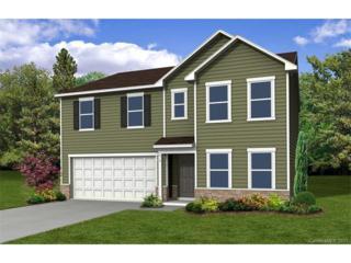 9334 Magnolia Lily Avenue, Charlotte, NC 28227 (#3285192) :: Puma & Associates Realty Inc.