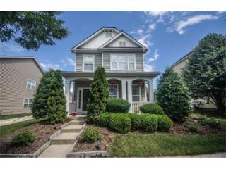 12115 Monteith Grove Drive, Huntersville, NC 28078 (#3285320) :: Puma & Associates Realty Inc.