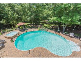 2007 Sandy Pond Lane, Waxhaw, NC 28173 (#3285396) :: Puma & Associates Realty Inc.
