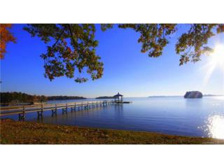 151 Ripplewater Lane #458, Mooresville, NC 28117 (#3285494) :: Carlyle Properties