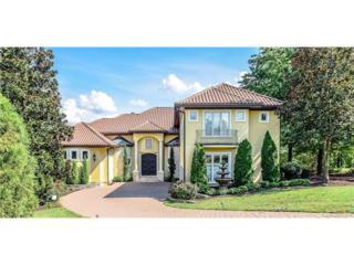 18010 Harbor Light Boulevard :, Cornelius, NC 28031 (#3202607) :: Carlyle Properties