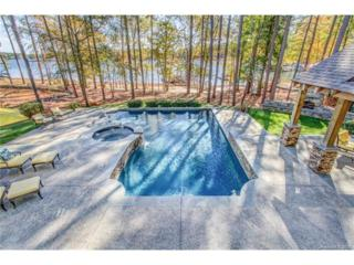 3933 Channel Point Lane, Denver, NC 28037 (#3248893) :: Carlyle Properties