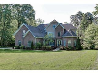 162 Waterbury Drive, Mooresville, NC 28117 (#3276610) :: Rinehart Realty