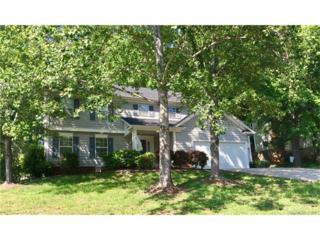 14722 Sapphire Lane, Pineville, NC 28134 (#3280262) :: Puma & Associates Realty Inc.