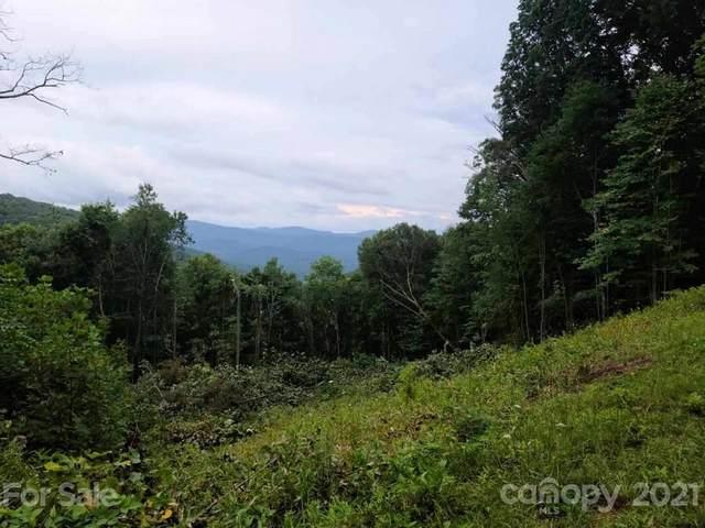 24 Poplar Forest Road 1, 2 & 3, Fairview, NC 28730 (#3609794) :: Willow Oak, REALTORS®