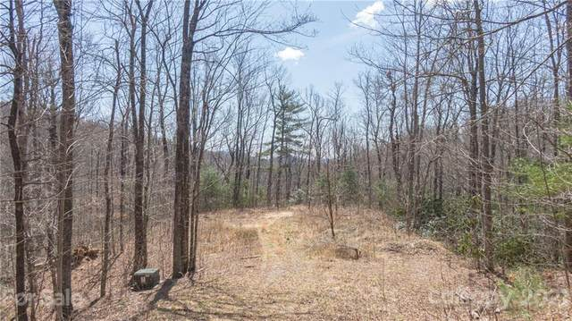 TBD Eastatoe Gap Road #10, Rosman, NC 28772 (#3697263) :: Willow Oak, REALTORS®