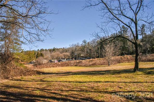 99999 Emmas Grove Road, Fairview, NC 28730 (#3580090) :: Besecker Homes Team