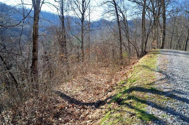 Lot 24 Sec A Lochmoor Lane Lot 24 Section , Waynesville, NC 28785 (#3145672) :: Lake Wylie Realty