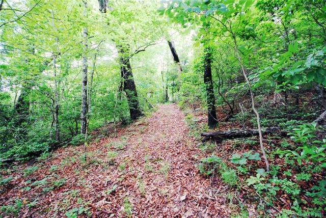 888 Kelly Mountain Road 2,4,6,22,23, Brevard, NC 28712 (#3153978) :: Mossy Oak Properties Land and Luxury