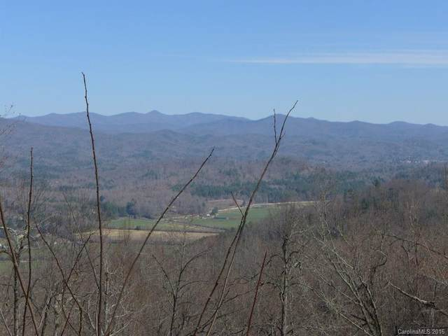 1111 Kelly Mountain Road 93 Ac,2,4,6,22,, Brevard, NC 28712 (#3153984) :: Carlyle Properties