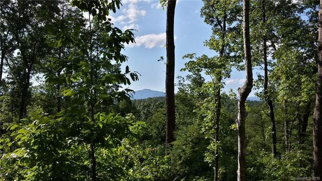 LOT 23 S Cross Creek Trail, Mill Spring, NC 28756 (#3158712) :: The Allen Team