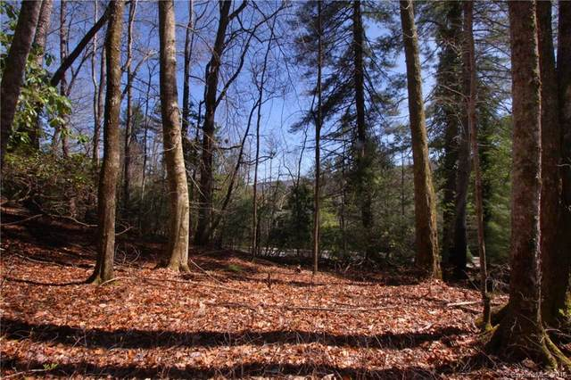 Lot 61 Deerlake Road #61, Brevard, NC 28712 (#3162541) :: Mossy Oak Properties Land and Luxury