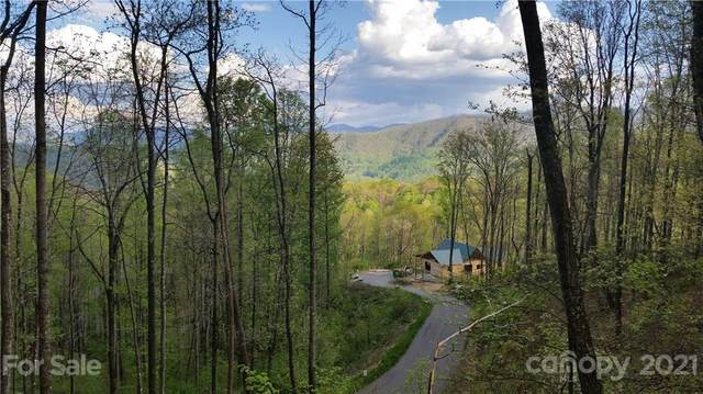 00 Schotts Pass Way #35, Waynesville, NC 28785 (#3171184) :: Willow Oak, REALTORS®