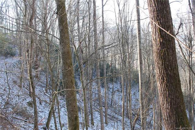 Lot 9 Penny Lane, Waynesville, NC 28785 (#3180824) :: Robert Greene Real Estate, Inc.